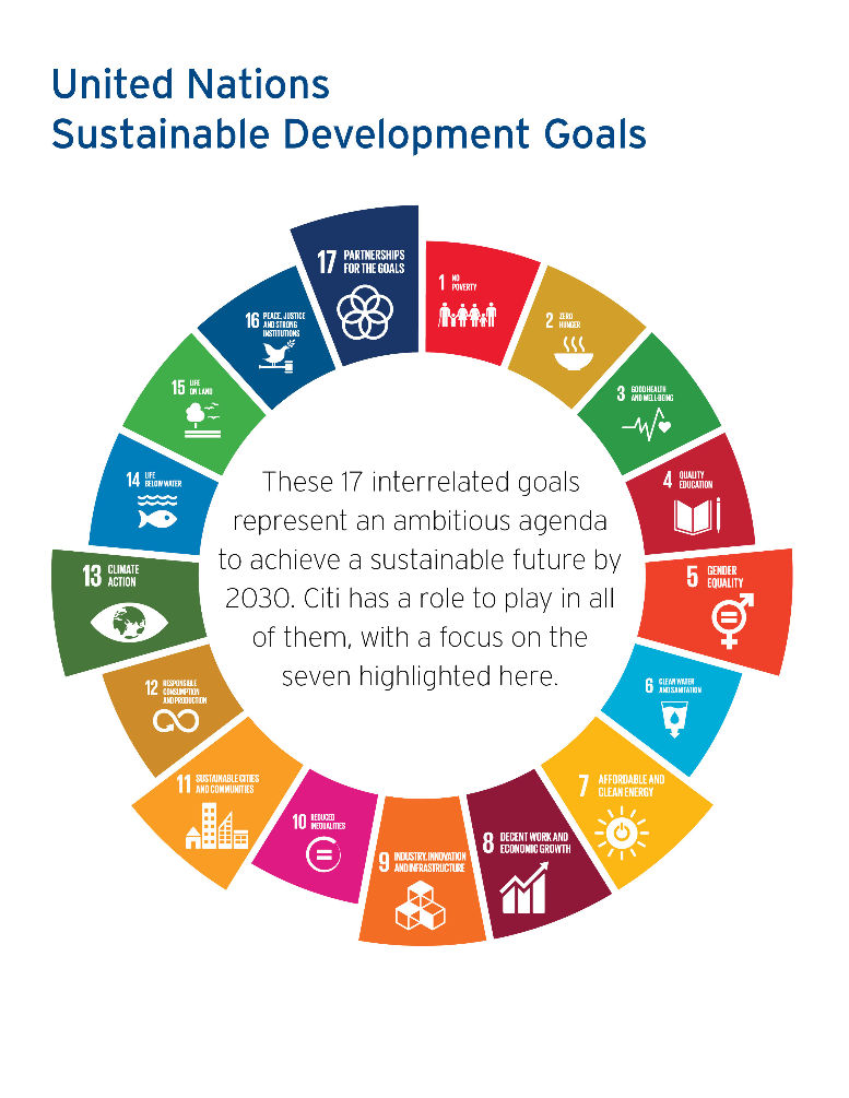 Citi  and the UN Sustainable Development Goals